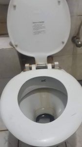 unclogging a clogged toilet