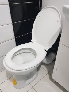a clogged toilet in holland
