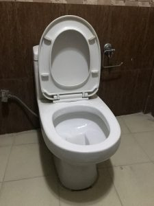 a clogged toilet in landsmeer