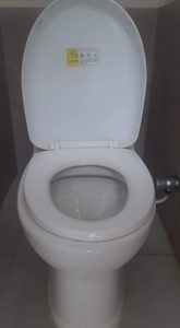 a clogged toilet in roosendaal