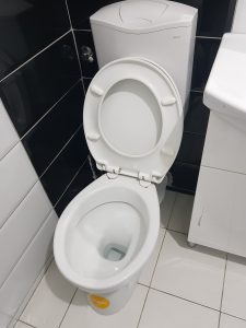 a clogged toilet in the hague