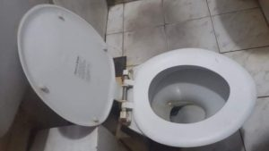a clogged toilet in zwolle