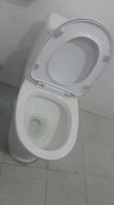 unclogging a toilet in harderwijk