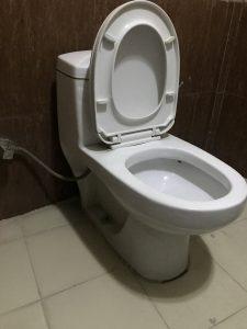 unclogging a toilet in lelystad