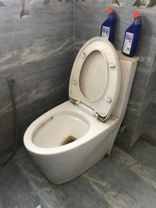 unclogging a toilet in middelharnis