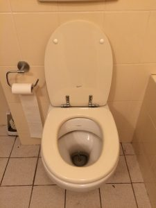 wc drain is clogged
